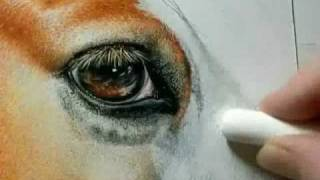 "getlinkyoutube.com-Painting a Day Demonstration - Gypsy Vanner by Roberta ""Roby"" Baer PSA"