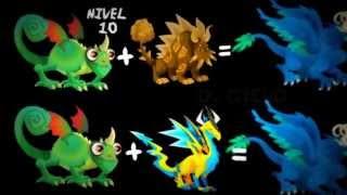 getlinkyoutube.com-combinaciones de dragones nuevo en dragon city (actualizado)