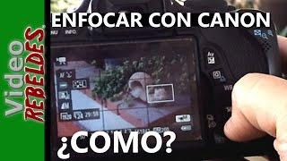 getlinkyoutube.com-Tip para enfocar mejor el video con las cámaras Canon DSLR?