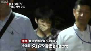 getlinkyoutube.com-猫の連続不審死に関与か 33歳男を逮捕