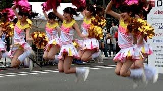 getlinkyoutube.com-京都学生祭典2015 同志社大学チアダンスサークルSWEETiEZ