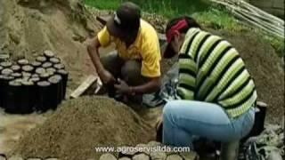 getlinkyoutube.com-1 -d)Tecnicas de Producción de Plantones en el Vivero