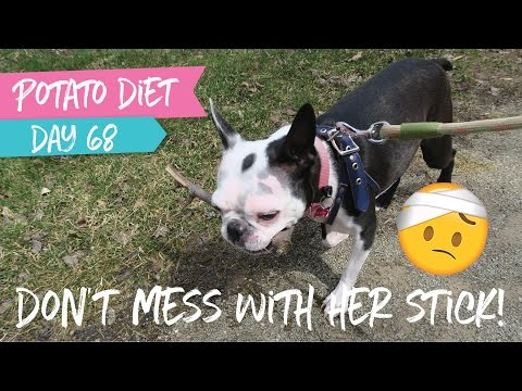 Trying That Hiking Thing   |  Potato Diet Day 68