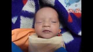 getlinkyoutube.com-Baby videos - Funny Cute