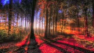 Autumn Mix (Melodic Progressive House) - Mixed by Simy