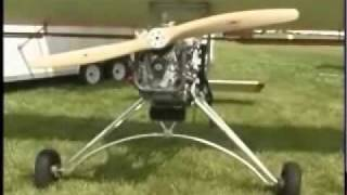 Backyard Flyer Swing Wing ultralight aircraft