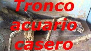 getlinkyoutube.com-Troncos acuario casero