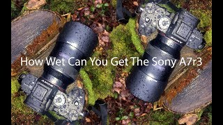 The Sony A7r3 and the real world weather seal test width=