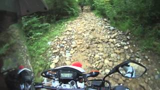 What it's like owning a CRF250L