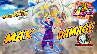 *WARNING* I BROKE THE GAME!! MAX DAMAGE?? LR GOHAN NUKE TEST || Dragon Ball Z Dokkan Battle