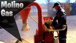 Molino triturador de pastura #14 con motor gasolina.MPG