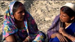 Moong Transplantation Hindi Jeevika Bihar
