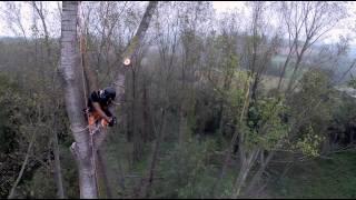 getlinkyoutube.com-Tree climbing - Drone riprende l'abbattimento di un albero ad alto fusto
