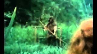 Robin of Sherwood The  Two Robins