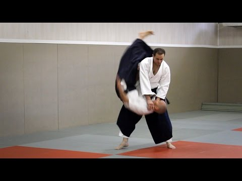 Aikido - Guillaume Erard seminar at the Cercle Christian Tissier (June 2016)