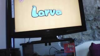 Tuba e Larva