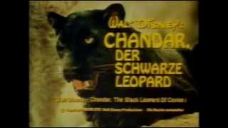 getlinkyoutube.com-Chandar, der schwarze Leopard  -Clips-