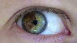 getlinkyoutube.com-Video para cambiar tu color de ojos