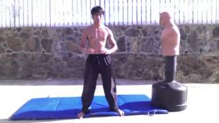 getlinkyoutube.com-Wing Chun JKD TKD Boxing Tai Chi and Capoeira Mixed Striking Training