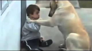 getlinkyoutube.com-Heart touching video          This is so Beautiful