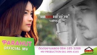 getlinkyoutube.com-มดแดงเฝ้าม่วง -วงพัทลุง [Official MV]