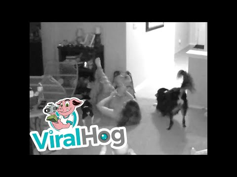 Mom Trips Over Baby Gate