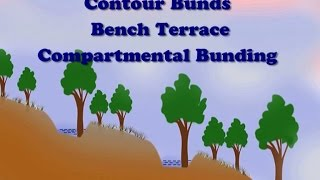 Contour Bunds, Bench Terrace & Compartmental Bunding