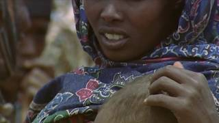 getlinkyoutube.com-The Selfish Ape: The Tribe of Suit (part 3)