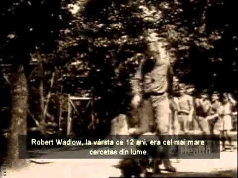 Gradina Edenului - Dr. Kent Hovind subtitrare in romana