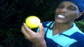 getlinkyoutube.com-The benefits of lime - Grenada's Master Herbalist Patrick Delves