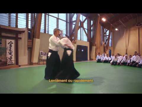 Stage International d'Aikido du VIGAN 1990/2015 - Episode 2 : IKEDA Sensei