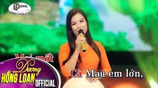 Karaoke   Áo Mới Cà Mau   Dương Hồng Loan