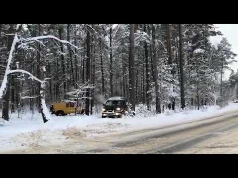 Мастадонты в снегу 2