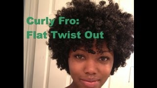 getlinkyoutube.com-Curly Fro: Flat Twist out on Natural Hair