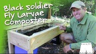 How To Make A DIY Soldier Fly Larvae Composting Bin