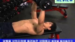 가슴 근육운동
