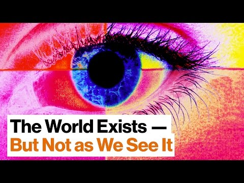 Do Our Senses Reveal the World—Or Do They Obscure It? | Beau Lotto