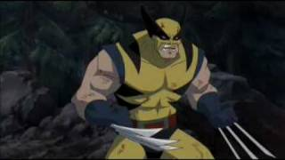 getlinkyoutube.com-Wolverine vs Hulk Director's Cut Bloody Version