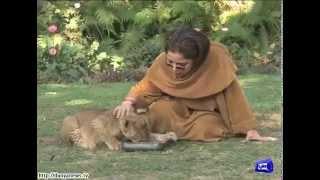 Babra Sharif adopts tiger cub