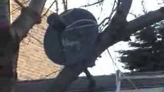 getlinkyoutube.com-Most Powerful Antenna!
