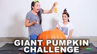 getlinkyoutube.com-Giant Pumpkin Challenge - Merrell Twins