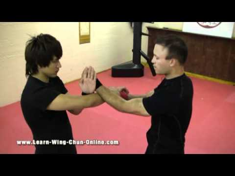 Wing Chun Sil Lim Tao Drills Video