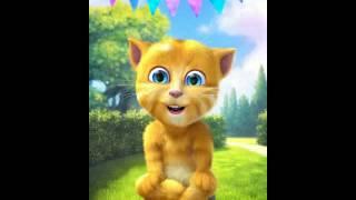 getlinkyoutube.com-جينجر المتكلم اغنية القطه المشمشيه