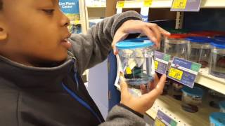 getlinkyoutube.com-SHOPPING FOR OUR NEW TURTLE TANK!!!