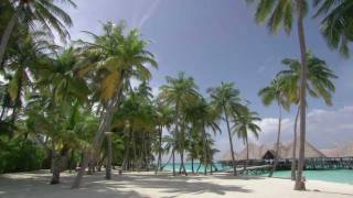 getlinkyoutube.com-Maldives:  Scattering  Diamonds