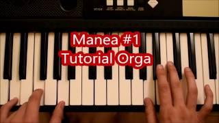 getlinkyoutube.com-Canta La Orga - Manea #1 Tutorial Orga #30
