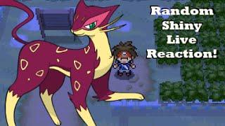 getlinkyoutube.com-Shiny Liepard Random Encounter - Live Reaction & Catch