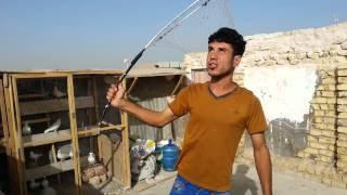getlinkyoutube.com-طيور حمر الديوانية 2015 احمد الخالدي