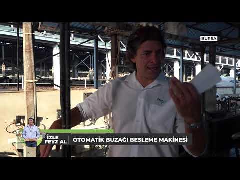İzle Feyz Al 03 09 2020 Buzağı Besleme Ve Ötesi