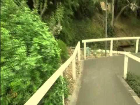 호주 멜버른 퍼핑빌리(Puffing billy)